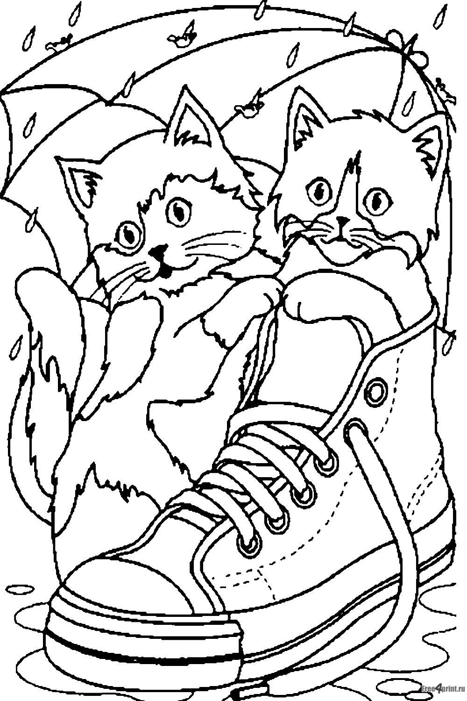 Самые прикольные, картинки кошки с котятами для раскрашивания