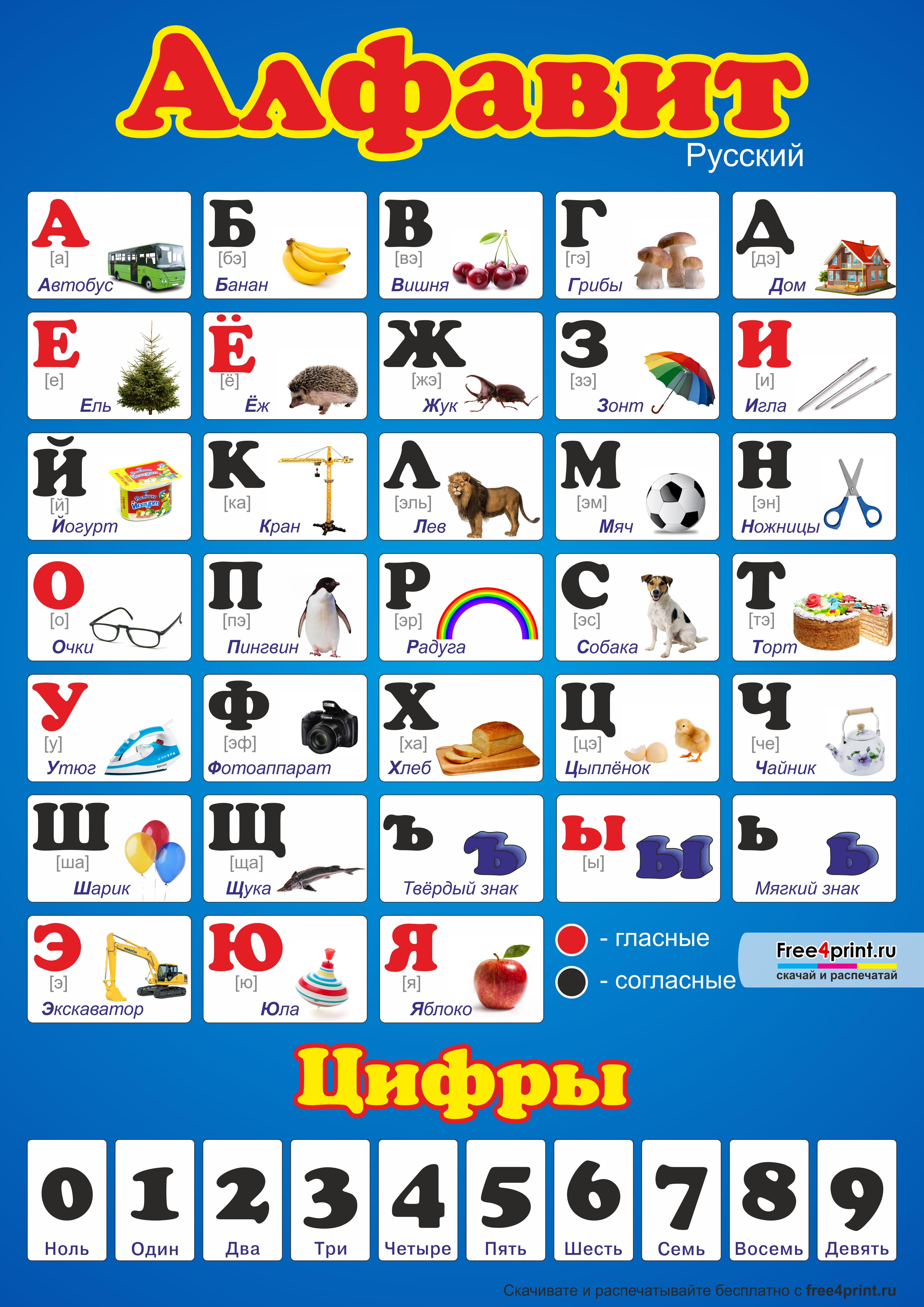 В русском алфавите картинки