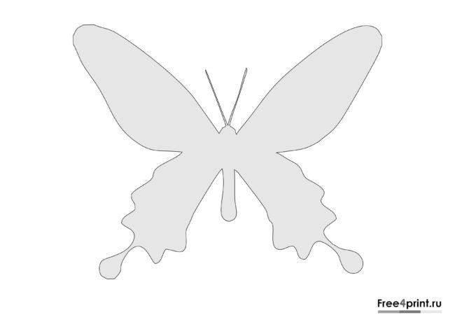 Трафарет с бабочкой для распечатки