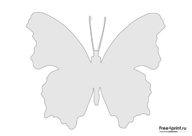 Шаблон трафарета бабочки